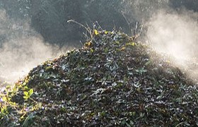 Everything You Wanted to Know about Composting in Portugal